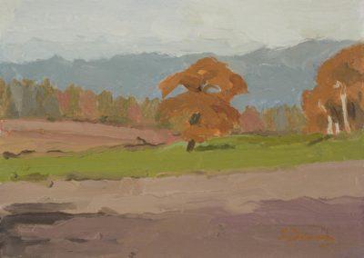 Near Kingley Vale, autumn       oil on canvas   c 19868 x 6 in (20 x 15cm)